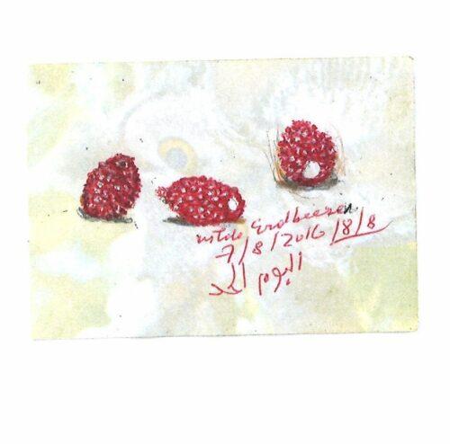 Peter Handke Wilde Erdbeeren